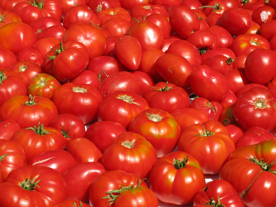 https://www.promotionmagazine.it/wp/wp-content/uploads/2016/03/tomatoes-1243132_960_720.jpg