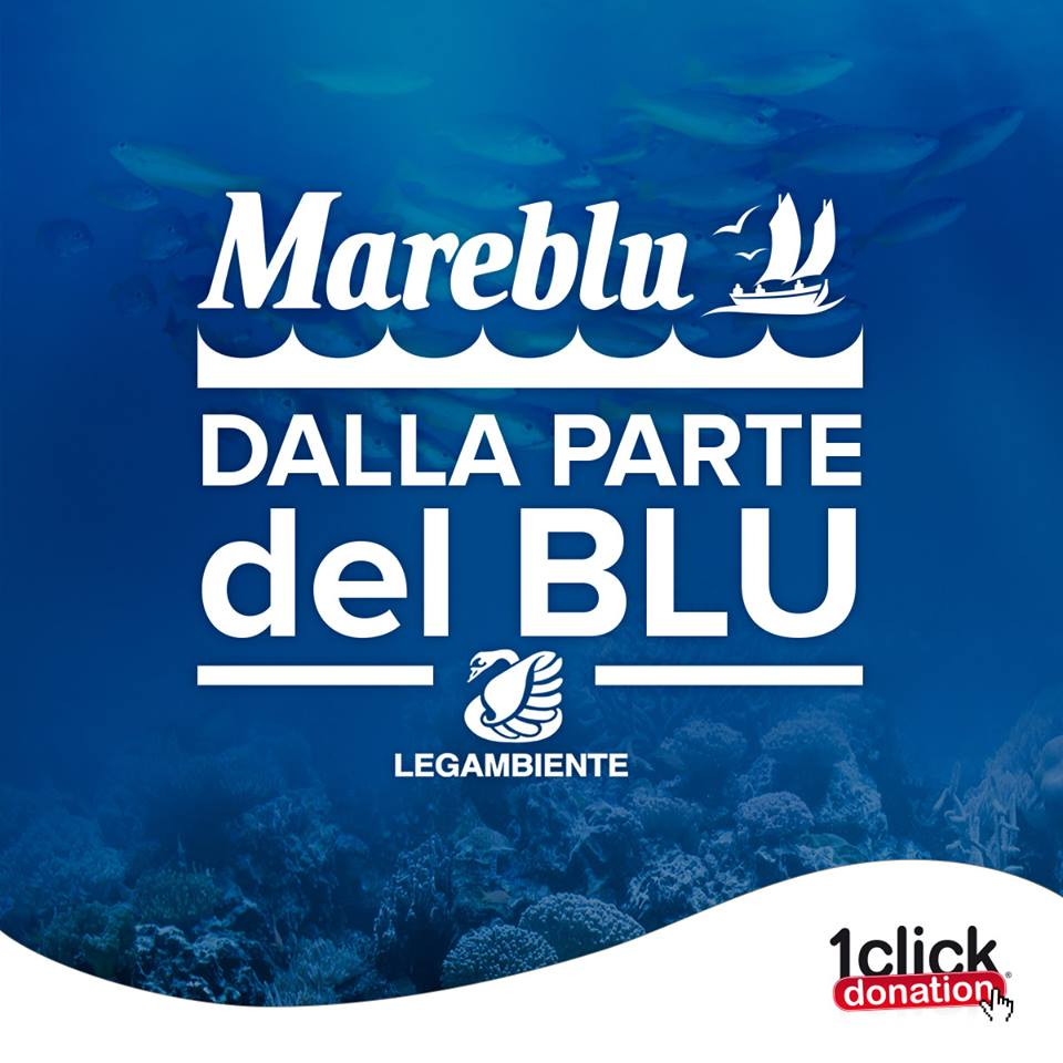 https://www.promotionmagazine.it/wp/wp-content/uploads/2017/03/Logo_Dallapartedelblu.jpg