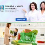 Concorsi Soffas brand Regina